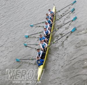 WEROW vets head 0246 300x293 - WEROW_vets head-0246