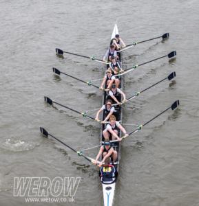 WEROW wehorr 3752 289x300 - WEROW_wehorr-3752