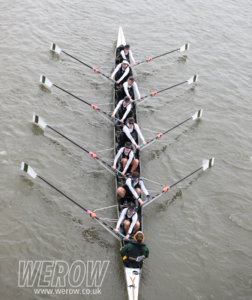 WEROW wehorr 4546 252x300 - WEROW_wehorr-4546